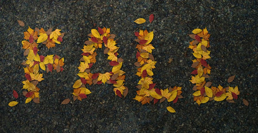 Limpieza ayurvédica en otoño